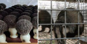 Grupo L'Oreal dejará de vender brochas con pelo animal